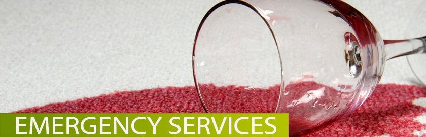 Oakville Carpet Cleaning Amazing Results Cleaning
